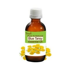 Blue Tansy Pure And Natural Essential Oil Tanacetum Annuum By Bangota