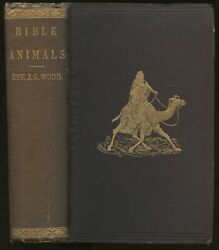 J G Wood / Bible Animals Being Description Of Every Living Creature 1869