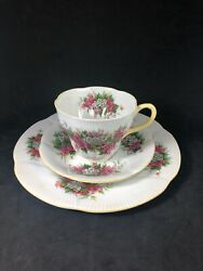 Royal Albert Blossom Time Series Hawthorn Cup Saucer And Plate Set Bone China 9j