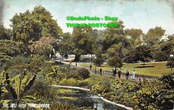 R355576 London. The Dell Hyde Park. P. P. And P. 1905