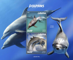 Liberia Marine Animals Stamps 2020 Mnh Dolphins Common Bottlenose Dolphin 2v S/s