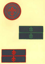 Scouts Of Mexico - Cub Scout Senior Rover Rank Award And Merit Patch Collection