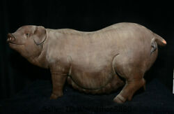 19.6 Old China Porcelain Pottery Feng Shui Zodiac Year Animal Pig Wealth Statue