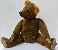 Early 1900's To Early 1920's Bear. ✨great Period Film Prop Piece✨
