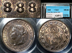 Elite Varieties Canada Large Cent 1888 Repunched 888 - Ms60 A381c