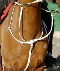 Light And Practical Biothane Running Martingale Podium