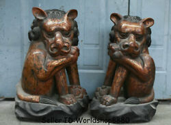 22.8 Old Chinese Wood Lacquerware Feng Shui Foo Fu Dog Lion Beast Statue Pair