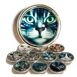 Kameleon Kitty Cat JewelPop; Choose Your Cat For Kameleon Rings and Jewelry