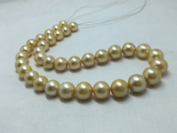 12 To 15 Mm Golden Color Round Shape Natural Sea Water Pearl Strand Good Luster