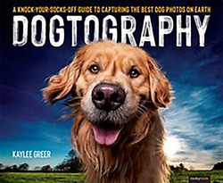 Dogtography A Knock-your-socks-off Guide To Capturing The Best Dog Photos On