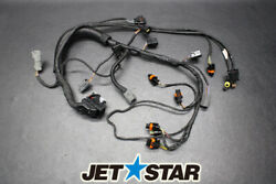 Seadoo Rxt Is 260 '10 Oem Engine Wiring Harness Ass'y Used [s840-063]