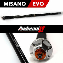 Andreani Fork Hydraulic Cartridge Indian Scout Bobber 2018