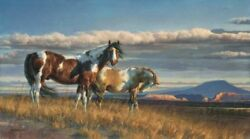 Nancy Glazier The Painted Desert Artist Signed And Numbered Canvas Paint Horses