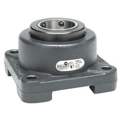 Moline Bearing 19311315 Flange Mount Bearing,10 1/4 In H Overall