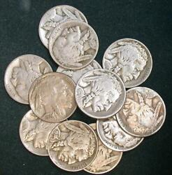 12 Buffalo Nickels Early Dates 15d17p18pds26d1931s Full Horn