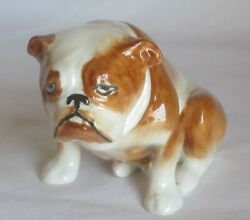 Fabulous And Rare Royal Doulton Bulldog Hn 881 Tan And White Excellent Condition