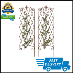 Garden Trellis For Climbing Plants 60 X 18 Rustproof Iron Potted Pack Of 2 New