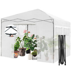 10and039x10and039 Portable Walk-in Greenhouse Pop-up Folding Plant Gardening W/window