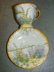 Vtg Clarence Bone China Cup / Saucer England Wild Flowers Rare Hand Painted