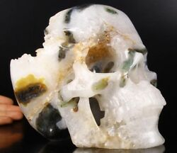 Giant 8.0 Green Moss Agate Druse Carved Crystal Skull Super Realistic 023