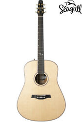 Acoustic Guitar Eco Seagull Artist/mosaic/lr Baggs Anthem/gig Bag Included Large