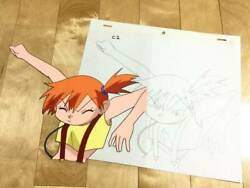 Things At The Time Pokandeacutemon Kasumi Cell Painting Video Correction Establishment