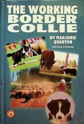 The Working Border Collie