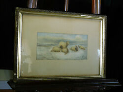 Attrthomas Sidney Cooper Listed Artist Original Water Color Sheep Resting
