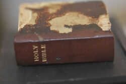 The Holy Bible, The Old And New Testamentsbryce And Son 1901