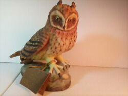 Forever Nature Bisque Limited Edition Rare And Htf Vtg 1979 Owl By Fred Aman