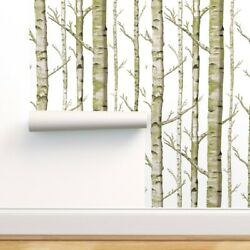 Removable Water Activated Wallpaper Birch Grove Woodland Forest Nursery Trees
