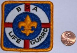 Vintage Bsa Oa Boy Scouts Of America Insignia Position Patch Life Guard Rare