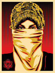 Occupy Protester Wall Street Crash Shepard Fairey Obey Giant Sold Out