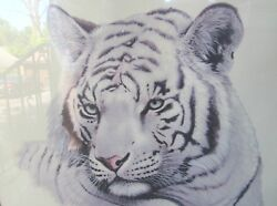 Collectible Jim Oliver White Tiger Signed Framed Print Circa 1970 Plate 34