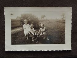 Kids Using The Dog As A Horse To Pull Their Wagon Vintage Photo