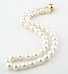 South Sea Pearl 19 Inch 9.5mm - 11mm White Strand 14k Yellow Gold Closure