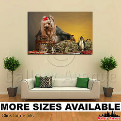 Wall Art Canvas Picture Print - Yorkie Yorkshire Terrier M001 3.2