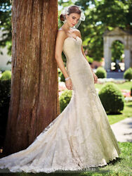 David Tutera Strapless Schiffli Lace On Tulle Over Satin Fit N Flare Gown Gregor