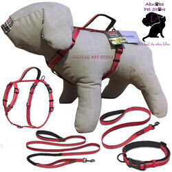The Company of Animals Dog Halti Lead Harness Collar All in one lead All Sizes