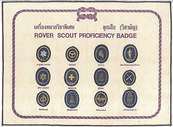 Scouts Of Thailand - Royal King's Rover Scout Top Award And Proficiency Badge Set