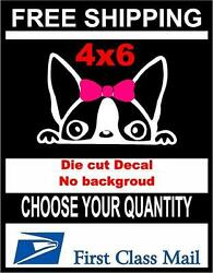 Peeking Dog Girl Boston TerrierVinyl Decal Sticker CarLaptop Window White 6yr
