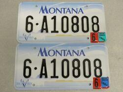 Montana License Plate Pair 6-a10808 Gallatin County Big Sky Bison Skull