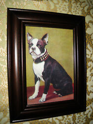 BOSTON TERRIER 3 X 5 brown framed animal art wall picture Victorian style print