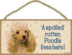 A Spoiled Rotten Poodle lives here Apricot Cute Dog Sign 5quot;x10quot; Wood Plaque 120