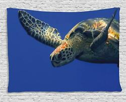 Turtle Tapestry Wall Hanging Art Bedroom Dorm 2 Sizes Available Ambesonne