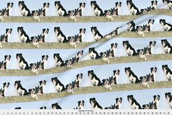 Collie Border Collie Dog Blue Sky Fabric Printed by Spoonflower BTY