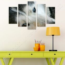 Husky Dog by Split 5 Panels  Poster or Wall Sticker Decal  5 Panels Wall art