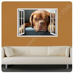 Dog With Glasses by Fake 3D Window  Poster or Wall Sticker Decal  Wall art