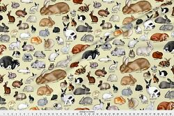 Rabbit Bunny State Fair Carnival Candy Funnel Fabric Printed by Spoonflower BTY