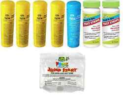 2-3 Day Shipping Spa Frog Kit 5 Pack-4 Bromine 1 Mineral Test Strips Jump Start